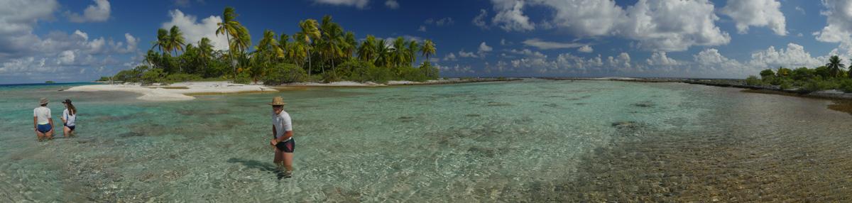 Drømmen om en øde palmeøy var plutselig helt reell